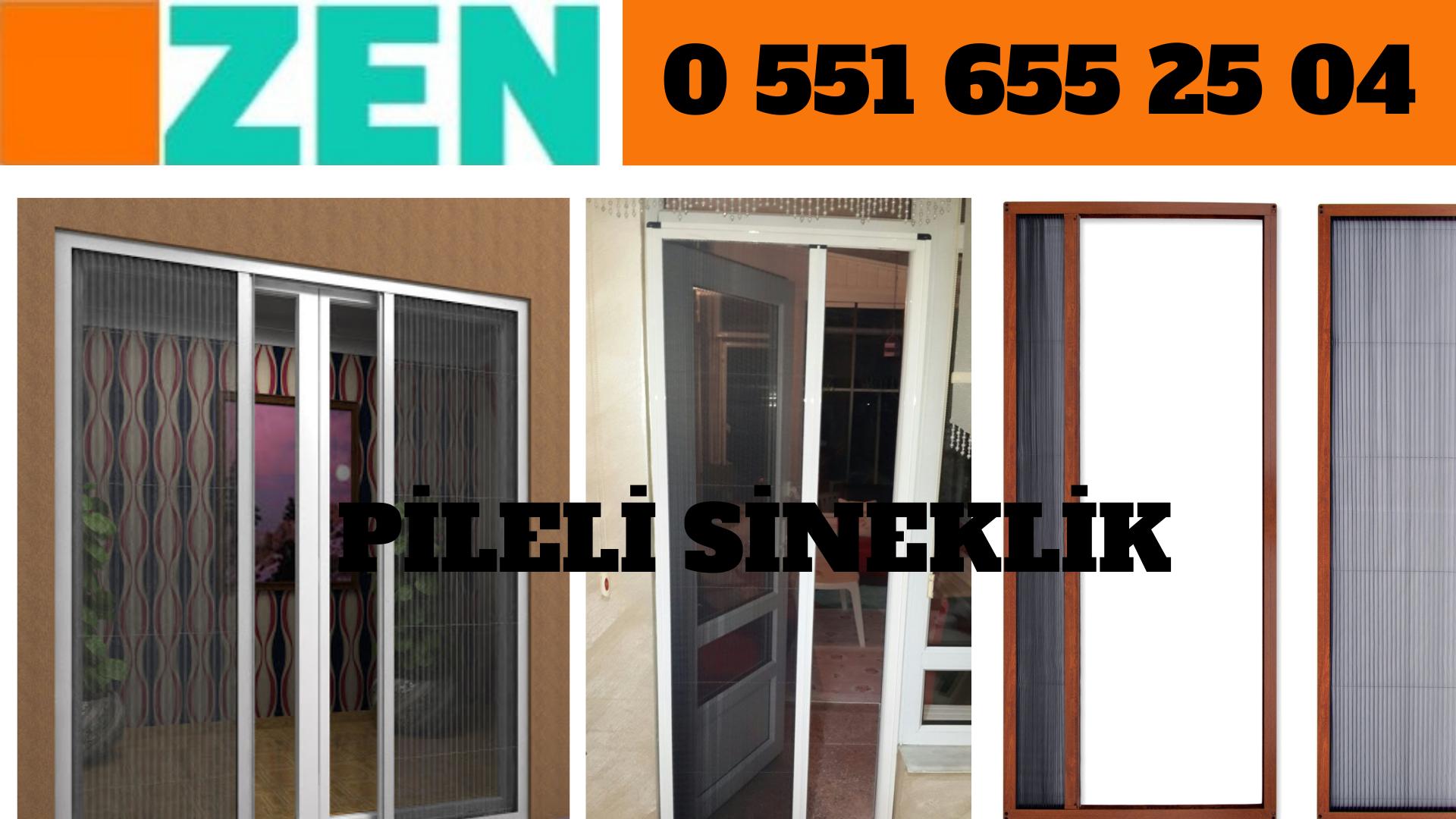 Pileli pencere sinekliği İzmir